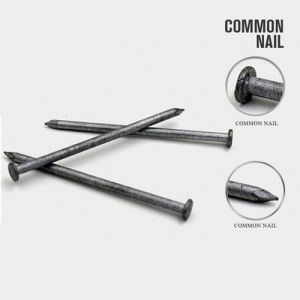 All Size Common Round Iron Nail with Good Quality pictures & photos