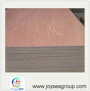 4X8 Plywood Cheap Plywood Prices for Sale pictures & photos