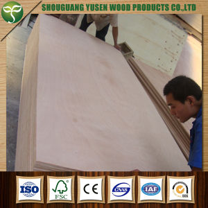 15mm Okoume Plywood Poplar Plywood pictures & photos