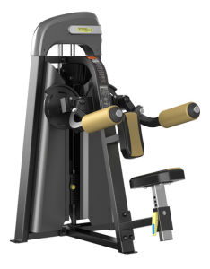 Commercial Fitness Equipment Lateral Raise XP-806 pictures & photos