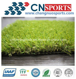 Outdoor Artificial Turf of Nature Looking pictures & photos