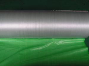 PE Material Coated Tarpaulin Plastic Tarp in Roll pictures & photos