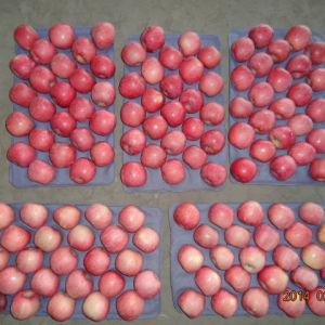 Grade A125-150 Fresh Red FUJI Apple pictures & photos