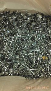 Factory-Roofing Steel Nails pictures & photos