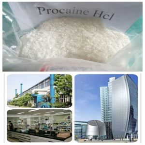 Procaine Raw Powder Pain Killer Local Anesthetic 99% USP pictures & photos