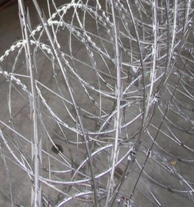 Cheap Galvanized Barbed Wire/Burglar Mesh pictures & photos
