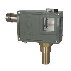 Non Leak Tightness Piston Adjustable Neutral Liquid Explosion-Proof Pressure Switch