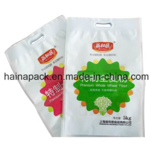 Plastic Compound Printing Packaging Handle Bag