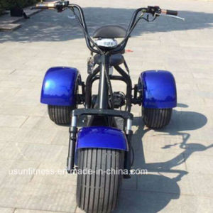 2017 New Design Electric Motorcycle with Ce pictures & photos