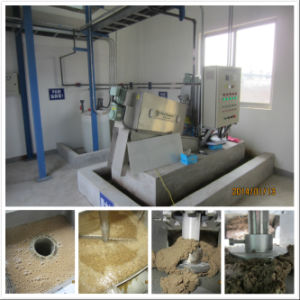 Exported to Europe Screw Press for Paint Sludge Removal pictures & photos