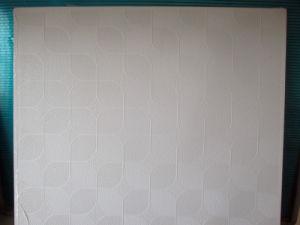 Suspention Ceiling Tiles pictures & photos
