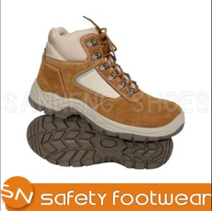 Trainer Safety Shoes with Steel Toe Cap (SN1659) pictures & photos