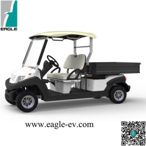 Golf Buggy, 2 Seat with Long Cargo Box, Flip Windshield, Top Plastic Roof, Carbon Steel Box pictures & photos