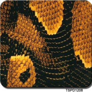 Tsau Top 1m Width Snake Skin Hydrographic Transfer Film pictures & photos