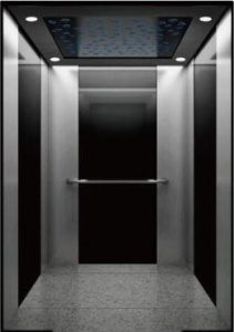 Professional Manufacturer of Elevator pictures & photos
