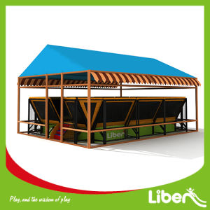 China Manufacturer with Professional Design Team Cheap Trampoline Tent pictures & photos