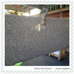 Chinese Granite Marble Bar Countertop (G623) pictures & photos