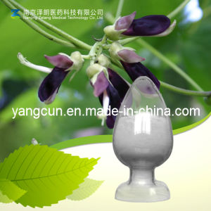 Mucuna Pruriens Extract Levodopa 98% pictures & photos