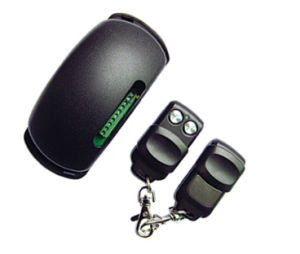 Indoor RF Wireless Receiver Transmitter pictures & photos