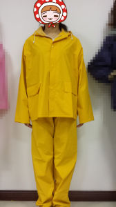 Protective Clothing PVC/Polyester/PVC Yellow Longcoat pictures & photos