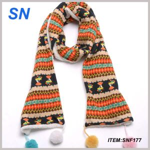 2015 New Design Winter Long Scarf pictures & photos
