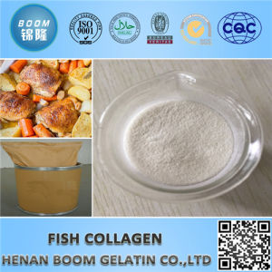 Fish Collagen for Improve Immune, Anti-Fatigue pictures & photos