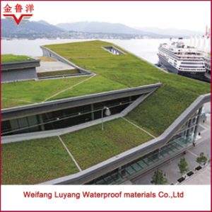 High Quality Sbs Modified Bitumen Waterproof Membrane for Planted Roof pictures & photos