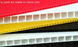 Twinwall/ Coreflute/ Corrugated/ PP Plastic Sheet pictures & photos