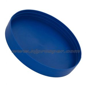 Plastic External Pipe End Cap (YZF-C09) pictures & photos