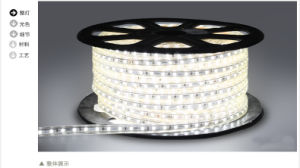 LED Lamp 220V/110V LED Strip LED Light pictures & photos