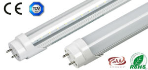 0.6m Oval Shape T8 LED Tube Lighting with CE RoHS