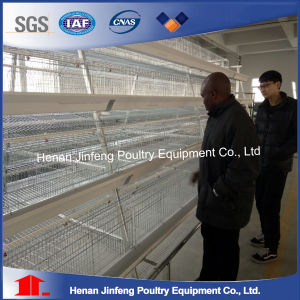 High Quality Automated Layer Battery Breeding Bird Chicken Cage with Manure Belt pictures & photos