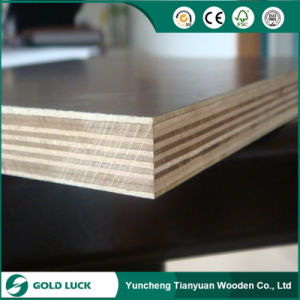 12mm Black Film Faced Shuttering Plywood pictures & photos