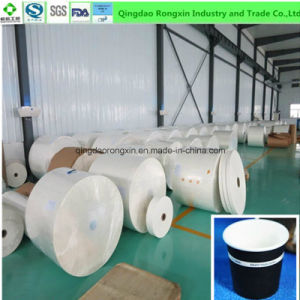 Double Side Poly Coated Paper for Making Cups pictures & photos
