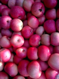 New Crop FUJI Apple pictures & photos