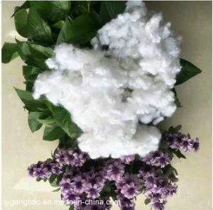 Polyeaster Satple Fiber (Hollow silicon) pictures & photos