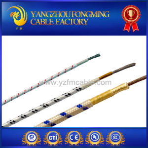 2.5mm2 Fiberglass Insulated Braided Electric Wire pictures & photos