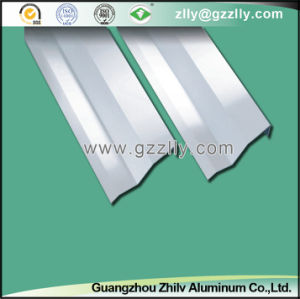 Aluminum False Vertical Style Screen Ceiling for Indoor Decoration -Sc002 pictures & photos