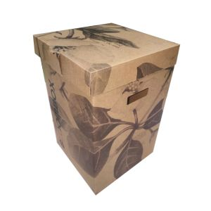 Brown Kraft Flexo Paper Box for Flower pictures & photos