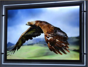 Indoor LED Ultra Slim Crystal Light Box with Magnet (CSH03-A3L) pictures & photos
