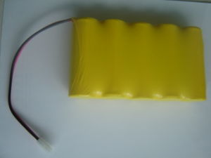 1.2V F 7000mAh 1.2V Nickel Cadmium Batteries/Ni-CD Battery Packs (F size) pictures & photos