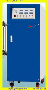 Vertical Electrically Heated Boiler (WDR)