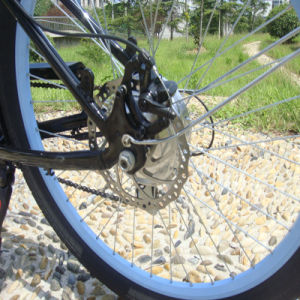 250W36V Beach Electric Bicycles for Men pictures & photos
