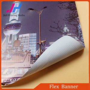 Good Quality Flex Banner for Advertising Material pictures & photos