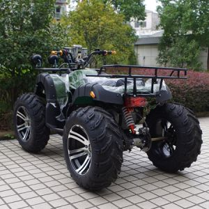 "New 14""Tyre 1500W Electric Dune Buggy (JY-ES020B) pictures & photos"