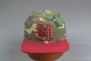 Camo Color 3D Embroidery Flat Brim Snapback Hat pictures & photos