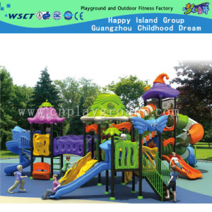 Theme Park Outdoor Equipment Playground Set on Stock (HC-5301) pictures & photos