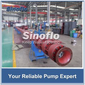API610 Lineshaft Vertical Turbine Deep Well Spindle Pump pictures & photos