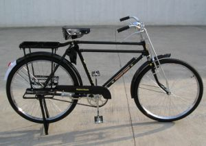 Popular Africa Luggage Bicycle Heavy Duty Bike (FP-TRDB-S001) pictures & photos