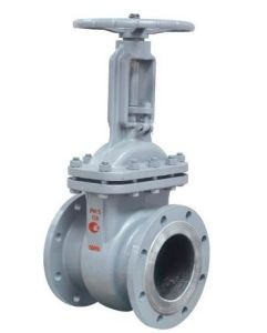 GOST steel gate valve pictures & photos
